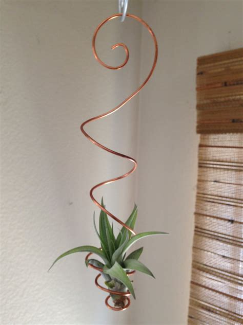 Diy Hanging Plant Holder - air plant holder hanging air plant holder air plant