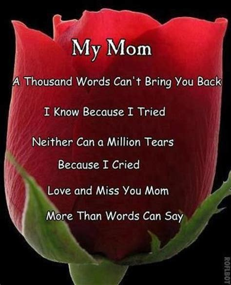 Love My Mom Meme - happy birthday mom love and miss you so much if only we