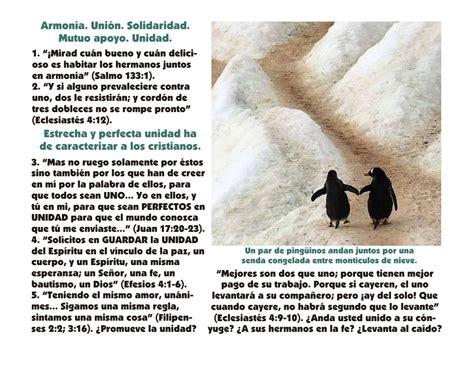imagenes biblicas de unidad la unidad de la iglesia seg 250 n ense 241 ada por cristo y los