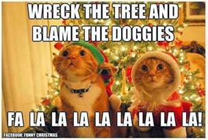 Cat Christmas Meme - cute and funny pictures and more what christmas is like