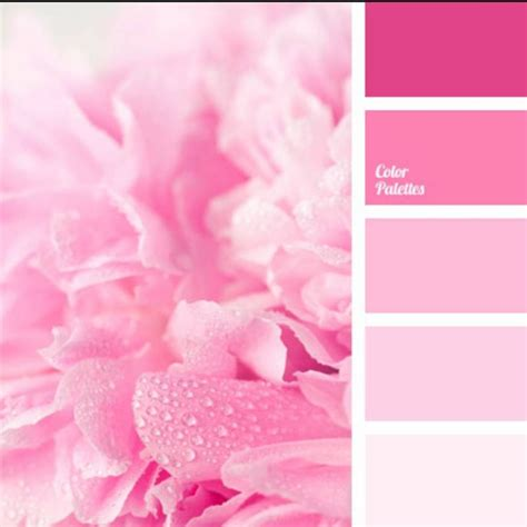 5 best pink paint colors according to interior designers