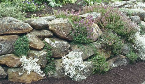 Rock Garden Herbs Retaining Walls Level A Sloped Site And Provide Plenty Of Places For Planting This Wall Is