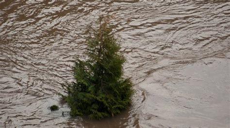wohnungen in regen wetter ch regen bringt 220 berschwemmungen in norditalien