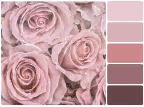 welche farbe passt zu altrosa die besten 25 altrosa wandfarbe ideen auf