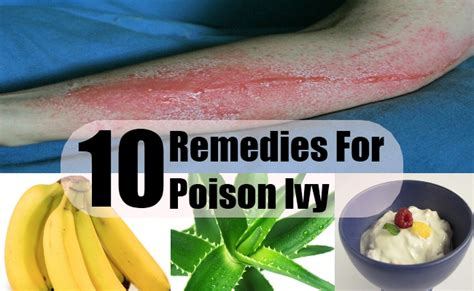 all stop poison ingredients in diet todayleadingmw