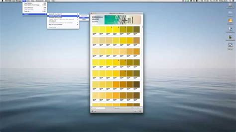 pantone color manager pantone color manager software overview