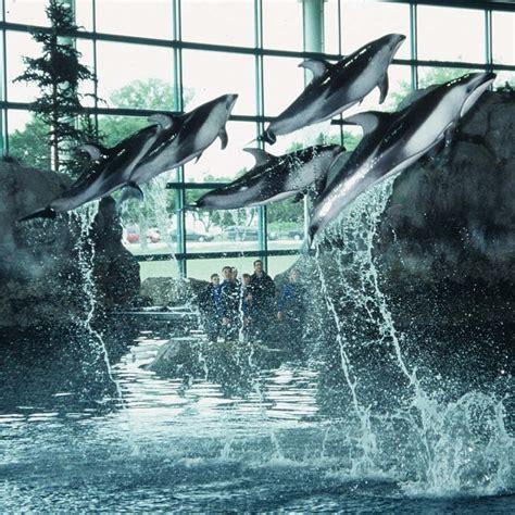 Shed Aquarium by Shedd Aquarium