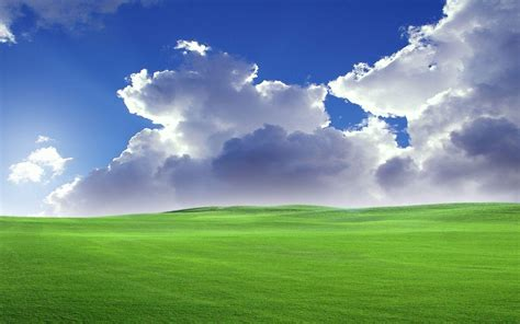 background wallpaper winxp windows xp backgrounds wallpaper cave