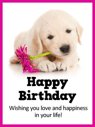 puppies happy birthday animal birthday cards birthday greeting cards by davia free ecards