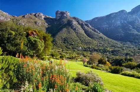 Kirstenbosch National Botanical Garden Check Out Botanical Gardens Cape Town
