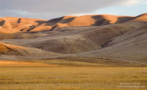 golden foothills california central coast landscape