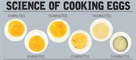 how long do you boil eggs exact time needed for boiling