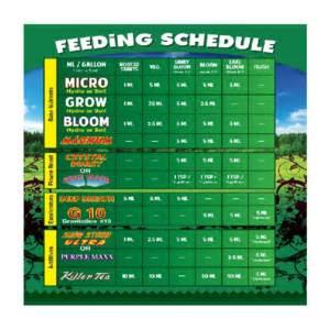 Feeder Dates Fecipe User