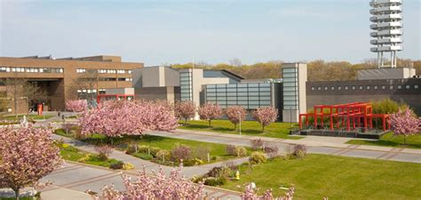 Stonybrook Mba Tuition by Top Geriatric Nursing Schools Resources Get Free Info