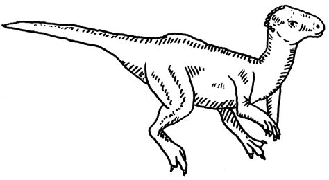 imaginext dinosaurs coloring pages imaginext dinosaurs coloring pages coloring coloring pages