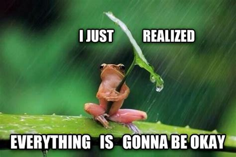 Of Peace Meme - everything is going to be ok oh the things that make me