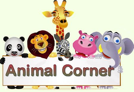 what animal are you animal corner