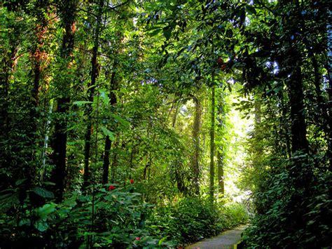 Penang Botanic Garden Tanjung Tokong Penang Malaysia Botanical Garden Penang