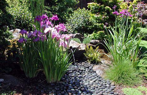 Images Of Backyard Landscaping Ideas Eichler Landscaping Back Yard
