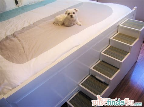 best carpet for bedrooms with dogs diy pet stairs simple steps you can make yourself