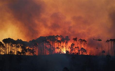 cape town fires burn lodge   ground  disrupt cycle