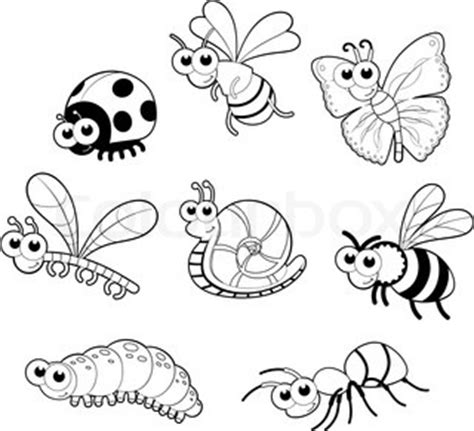 insect coloring book print out k 248 b stock fotos af quot snegl quot colourbox