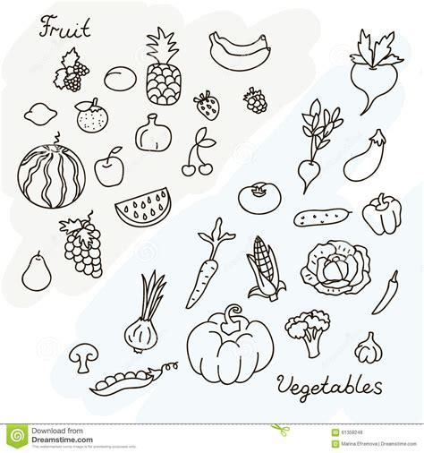 imagenes de verduras a blanco y negro vectorillustratie van vruchten en groenteninzameling in
