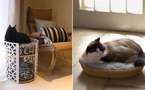 unique pet beds unique cat beds for pet lovers home design garden