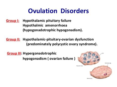 ovulation  women    early signs  female