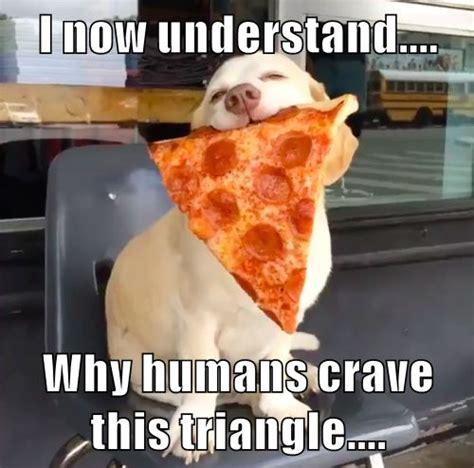 Pizza Meme - 17 best images about pizza hut memes on pinterest