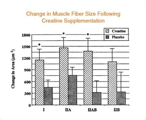 creatine studies how creatine helps you gain and strength