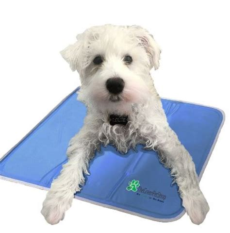 cooling pads for dogs cooling pad keepdoggiesafe