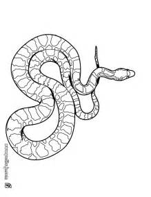 cottonmouth snake coloring page collections