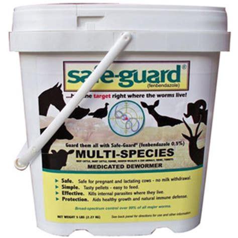 best dewormer opossum garlic for dewormer list dewormer for humans gt gt investigatory project on
