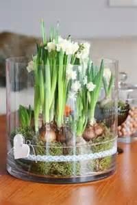 günstige vasen liebelein will tulpenzeit tulpenliebe im hochzeitsblog