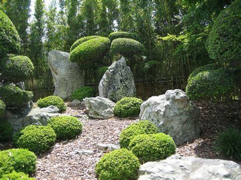 ausgefallene pflanzen garten 100 unglaubliche bilder moderner steingarten