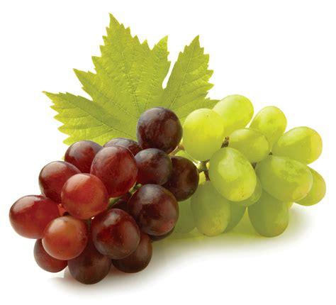 imagenes de los uvas kangris propiedades de la uva y sus beneficios ejercicios en casa