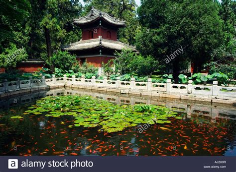 Goldfish Pond In Wofo Si Temple Of The Reclining Buddha Beijing Botanical Garden