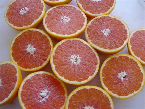 types of orange color types of orange colors www pixshark images galleries with a bite