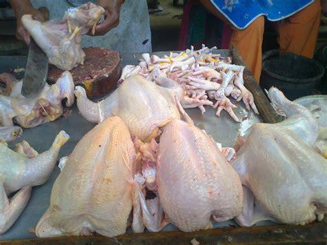 Jual Bibit Ayam Broiler Surabaya jual ayam potong dan daging giling area