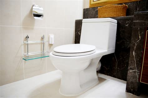 who invented bathrooms the toilet in 28 images impressions projection toilet