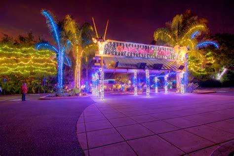 Oakland Zoo S Zoolights Illuminates Night Sky For Holiday Zoo Lights Oakland