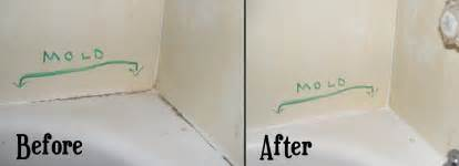 Cleaning Mildew From Shower by Flashback Cleaning Mold Stains From Bathtub Caulk