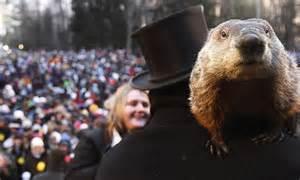 groundhog day australia groundhog day 2013 punxsutawney phil predicts will