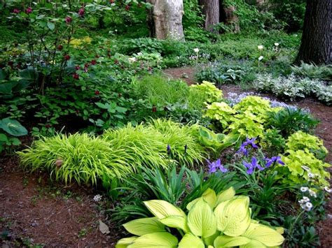 17 best ideas about low maintenance backyard on pinterest