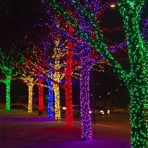 commercial outdoor tree lights commercial lights photo album best