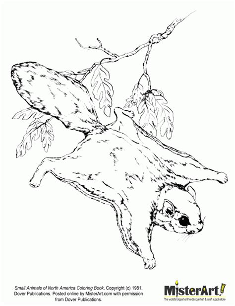 kleurplaat squirrel on a sunny day free printable 90 squirrel coloring page free printable squirrel