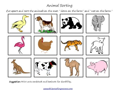Printable Animal Sorting Cards | free farm prek k pack updated and expanded