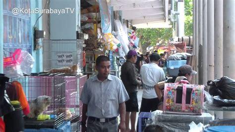 Pakan Udang Termurah pasar ikan hias gunungsari kota surabaya doovi
