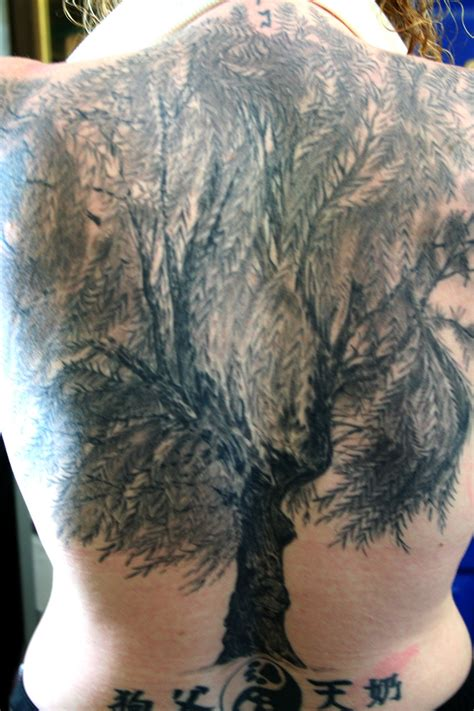 willow tattoo pin willow tree gallery images on
